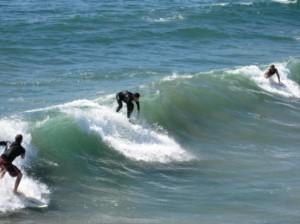 surfingul