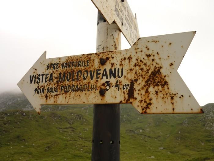 indicativ-traseu-spre-moldoveanu-1024x768