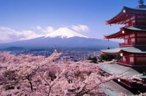 japonia excursie