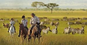 safari-tanzania-2