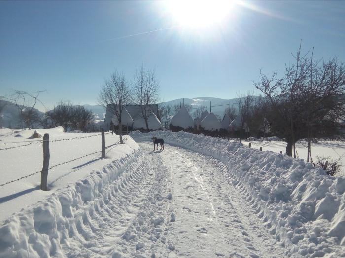 comuna-avram-iancu-iarna-13