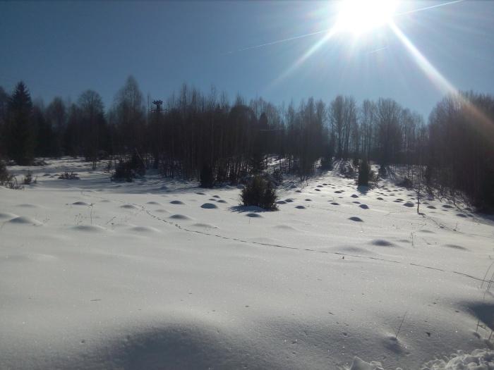 comuna-avram-iancu-iarna-5