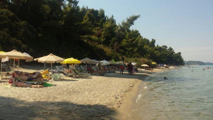 plaja-kriopigy